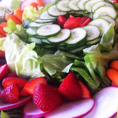 vegetais-que-refrescam